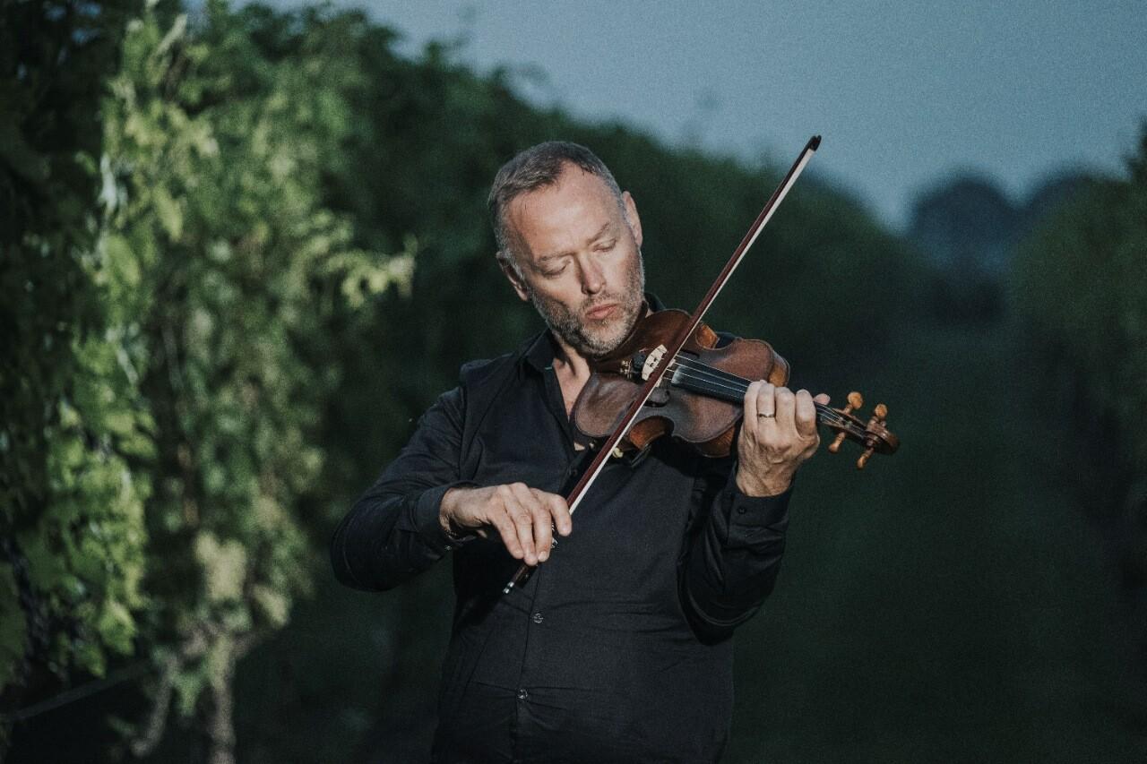 Muziek in de wijngaard van de Reestlandhoeve