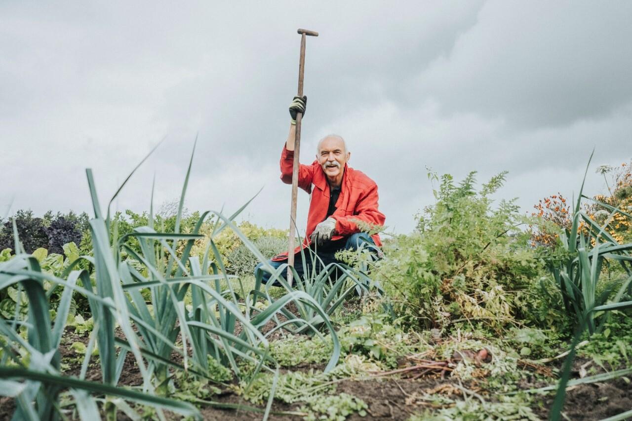 Een deelnemer van de Zorghoeve is druk aan het werk in de groentetuin op de Reestlandhoeve.