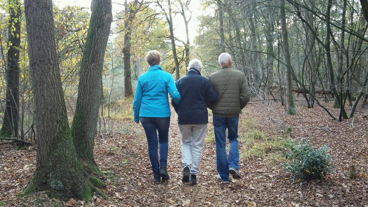 Wandelen in het bos samen met de deelnemers van de Gasterijl